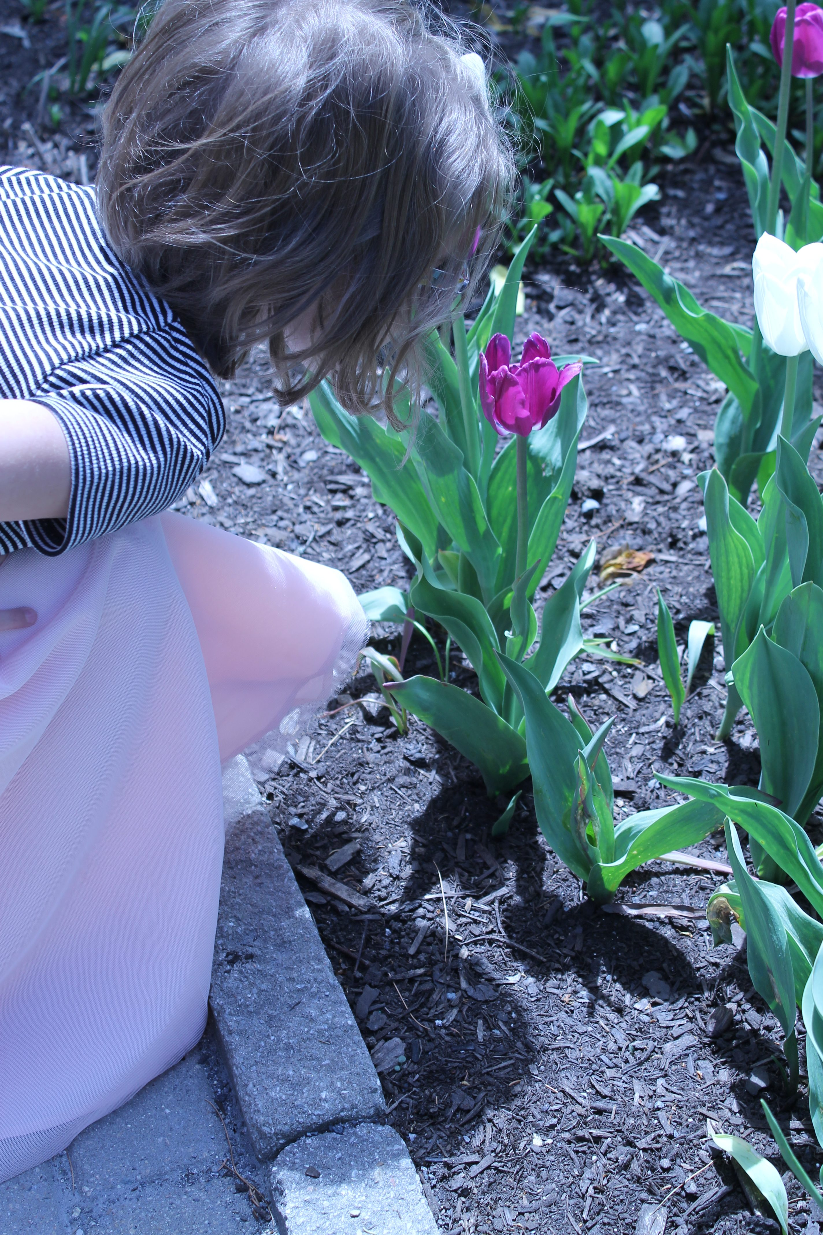 Understanding and Supporting a Highly Sensitive Child